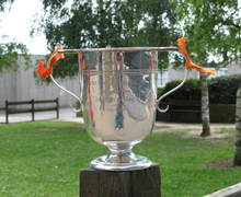 The School Inter-House Challenge Cup